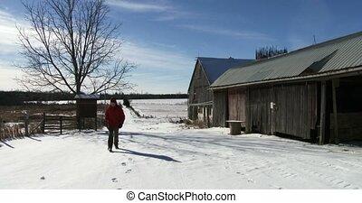 Farmer walking on a farm in winter - Farmer walking on his...