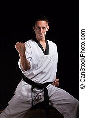 Martial arts master - Positions of professional fighter in...