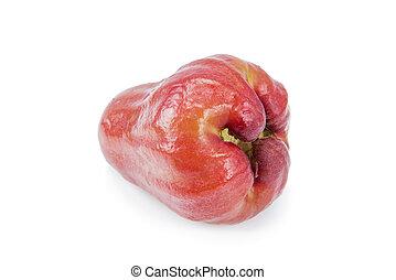 rosÈ, maçãs, isolado, ligado, branca,...
