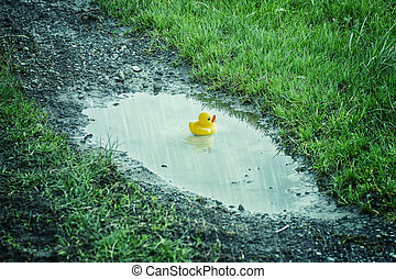 rubber duck bathing on puddle in the nature