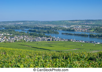 Ruedesheim am Rhein,Germany - Ruedesheim am...