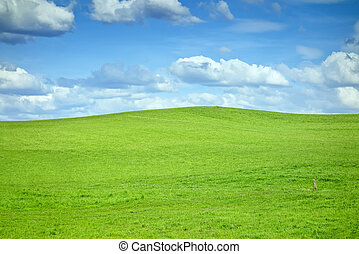 green hill - An image of a green hill and some clouds
