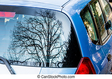 tree reflected in car window, symbol of nature and...