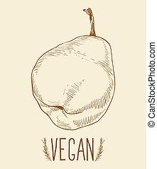 Pear fruit - vintage illustration