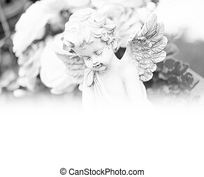 Cemetery - Angel on a cemetery in black and white