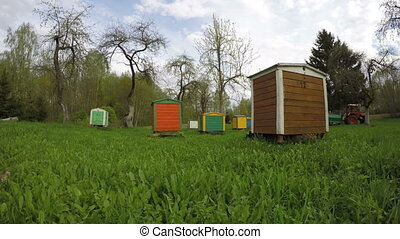 colorful beehives,Timelapse 4K - colorful wooden beehives in...
