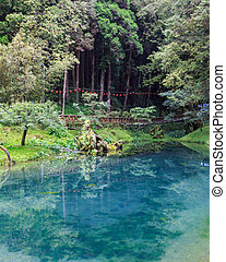 Alishan Lake - Still forest lake at Alishan National Scenic...