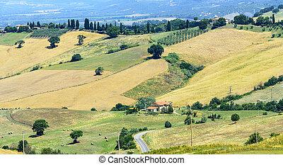 Maremma Tuscany, Italy - Country landscape in Maremma...