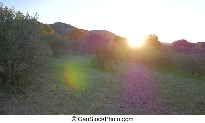 Sunrise over the Spanish mountains - Sun rising over thge...