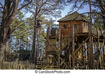 Tree house in a forrest - Shot of a cool Tree house in a...