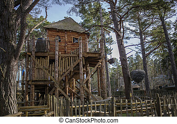 A cool treehouse in a forrest - Shot of a cool treehouse in...