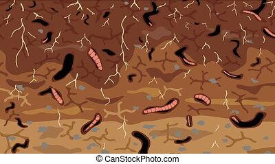 Earthworms in soil loop - Animated loop of earthworms...