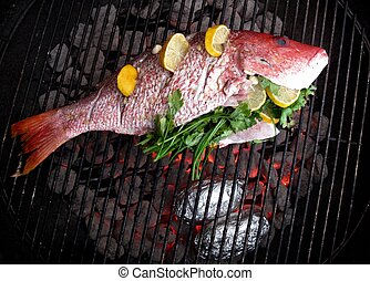 Grilled Fish - Fresh caught red snapper with lemon and...