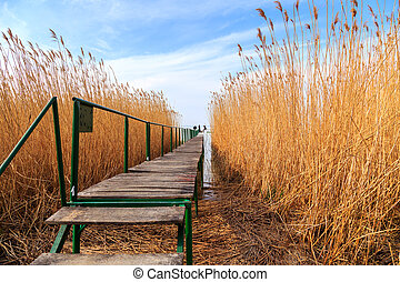 Wooden pier in tranquil lake Balaton-Hungary
