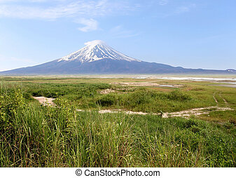 Mount Fuji and green meadows. - Mount Fuji and green meadows...