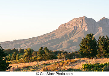 Helderberg in the setting sun - Helderberg (Clear Mountain)...