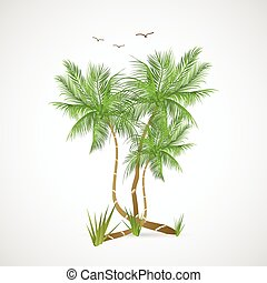Palm Trees Illustration