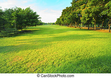 beautiful morning light in public park with green grass field an