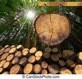 Wooden Logs with Forest and Sign - Trunks of trees cut and...