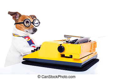 secretary typewriter dog - jack russell secretary dog typing...