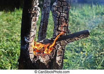 ardiendo fuego lento, tronco