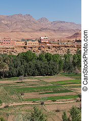 The agriculture at foothill in Tinghir city, Morocco - The...