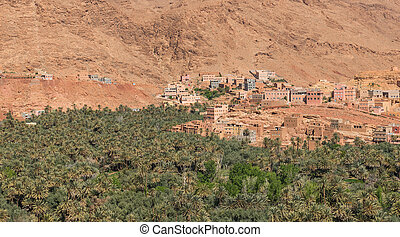 The agriculture of palm at foothill in Tinghir city, Morocco...