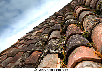 Tile roof of a house in the countryside