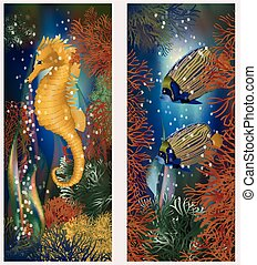 Underwater banners with seahorse and fish vector