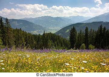View from Austrian Alps around Zell am See - valley with...
