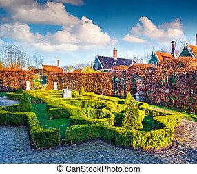 artystyczny, Zielonożółty, ogród, Z, Mały, bushes., ,