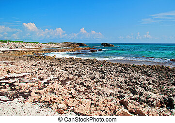 capture on a remote carribbean beach - photo capture on a...