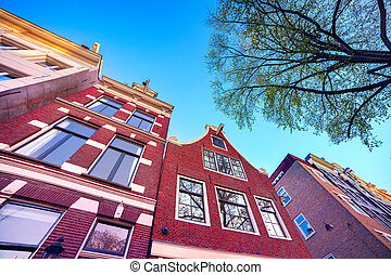 elementy, Od, autentyczny, Holenderski, Architektura,