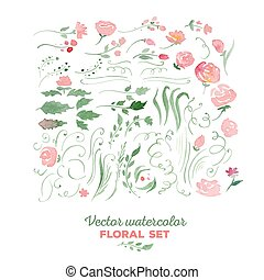 Floral set - vector watercolor illustration Flowers, leaves,...