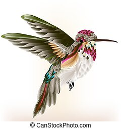 Beautiful colorful hummingbird in - Vector illustration with...