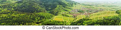 Panoramic view of the black forest and typical village...