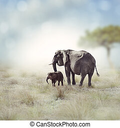 Elephants - Young Elephant With Its Mother