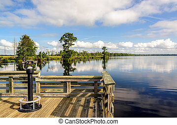 Observation Deck on Lake Drummond - Lake Drummond is a...