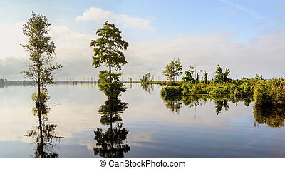 Lake Drummond is a freshwater lake at the center of the...