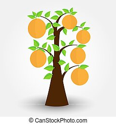 Orange tree isolated on a gray background with shadow....