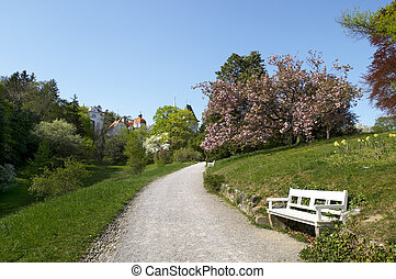 Baden - Path in the park. Baden. Austria. Europe.
