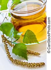 Betula pendula, birch tree tea in the glass cup -...