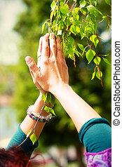 Spring prayer ndash; adoring the healing powers of the...