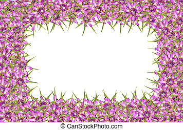 Abstract purple  flowers frame
