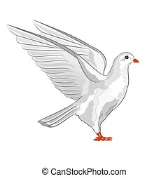 Dove white pigeon vectoreps - Dove white pigeon symbol peace...