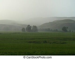 Summer downpour - Summer downpour. Landscape with trees and...