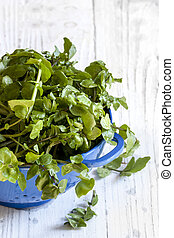 Watercress in Colander over White Timber Background