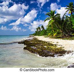 beach with caribbean sea