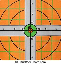 Bullseye Bullet Hole - A bullet hits the mark on this high...