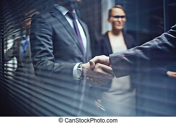 Handshaking with partner - Close-up of businessmen...